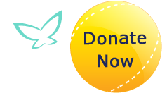Donate to Hospice Kingston